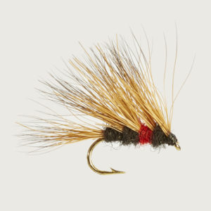 CADDIS (SEDGE)-SEDGEHOG BIBIO-0