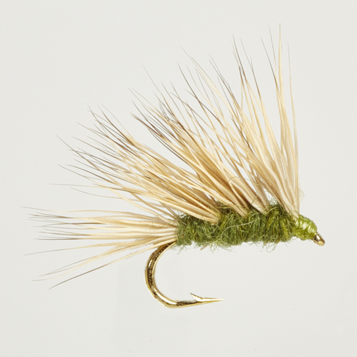 CADDIS S(EDGE)-SEDGEHOG OLIVE-0
