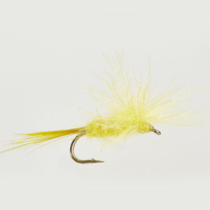 CUL DE CANARD-IMAGO-YELLOW MAY-0