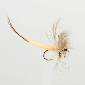 DETACHED MAYFLY-WHITE DRAKE-0