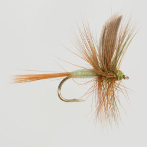 DRY WINGED-DARK OLIVE DUN-0