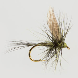 DRY WINGED-MEDIUM OLIVE DUN-0