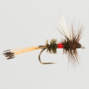 DRY WINGED-ROYAL COACHMAN-0