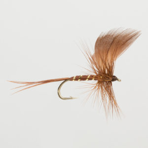 MAYFLY-BROWN DRAKE-0