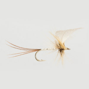 MAYFLY-WHITE DRAKE-0
