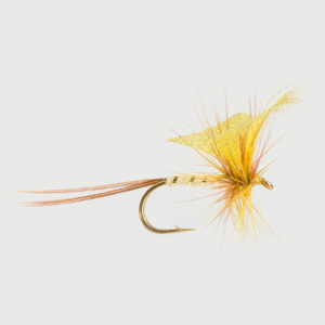 MAYFLY-YELLOW DRAKE-0