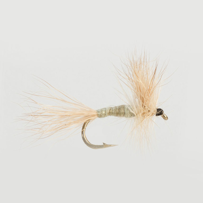 MAYFLIES-GREY WULFF-0