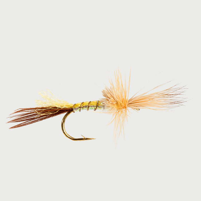 MAYFLY-YELLOW DRAKE CRIPPLE-0