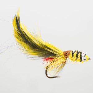 PREM. SALTWATER-SAMBA YELLOW-0