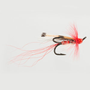 SALMON TREBLE-ALLY'S SHRIMP-ORANGE-0