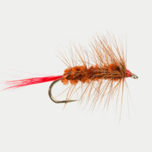 WOOLLY WORM-BROWN-0