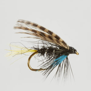CONNEMARA BLACK-0