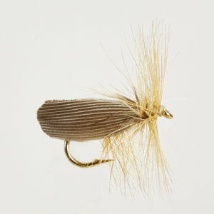 CADDIS (SEDGE)-SILVER-0