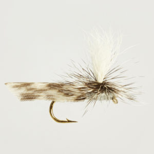 CADDIS (SEDGE)-ADAMS PARACHUTE-0