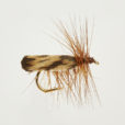 CADDIS (SEDGE) BROWN-0