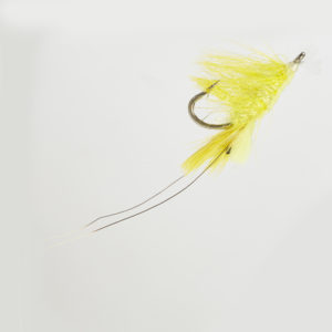 GLOW PATTEGRISEN SHRIMP YELLOW-0